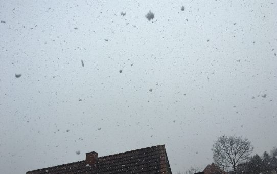 Und wieder Schnee…