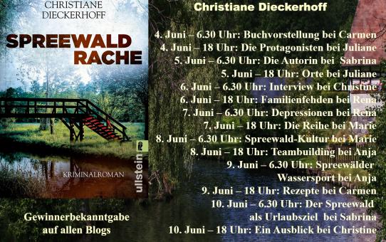 (Blogtour) Spreewaldrache – Depressionen